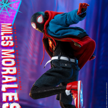 HT 1/6S Into the Spider-verse Miles Morales