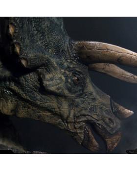 P1 Triceratops