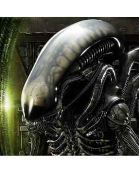 P1 Alien Big Chap