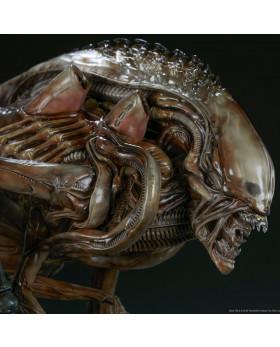 SC Mythos Alien Warrior Maquette