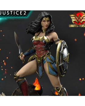 P1 PMDCIJ-06LM IJ2 WONDER WOMAN LM