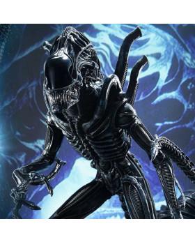 P1 PMDHAL-02 Warrior Alien