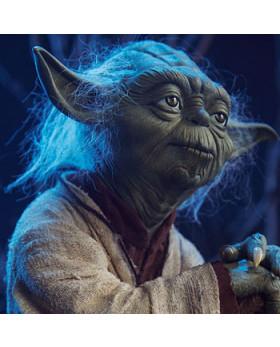 SC Yoda LSF